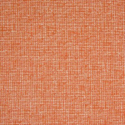 B8224 Persimmon Fabric