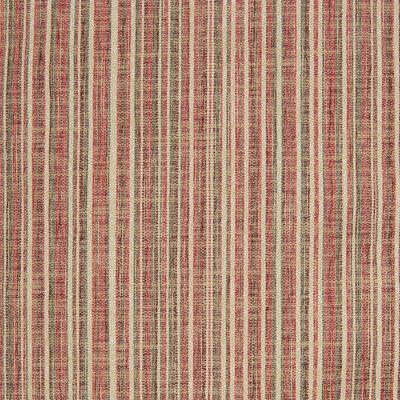 B8248 Russet Fabric