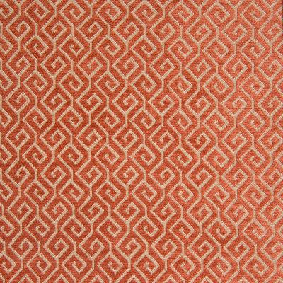 B8252 Tangerine Fabric