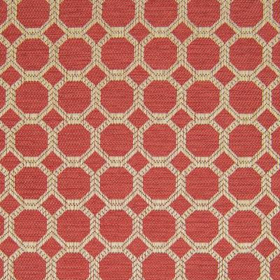 B8256 Bittersweet Fabric