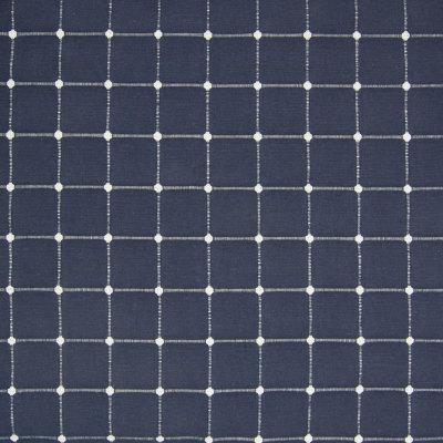 B8351 Indigo Fabric
