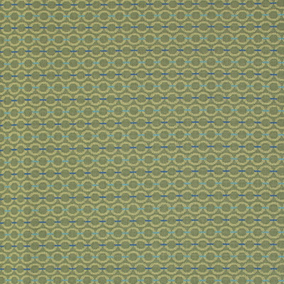 B8410 Avocado Fabric