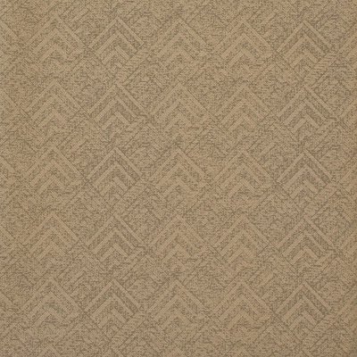 B8429 Sand Fabric