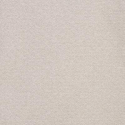B8434 Silver Fabric