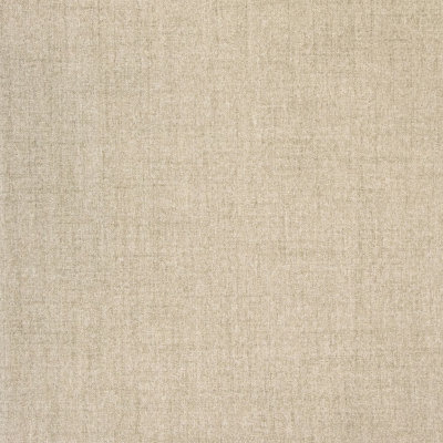 B8497 Willow Fabric