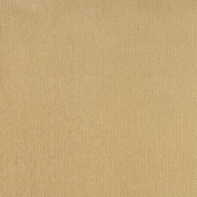 B8524 Sand Fabric