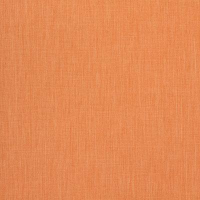 B8564 Squash Fabric