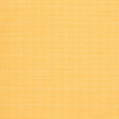 B8569 Lemon Fabric