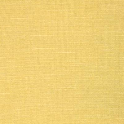 B8570 Canary Fabric