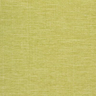 B8641 Lime Fabric