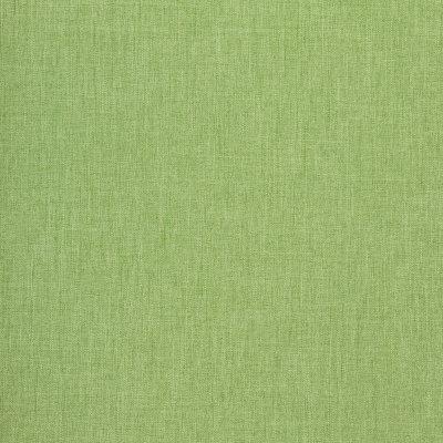 B8643 Overt Green Fabric