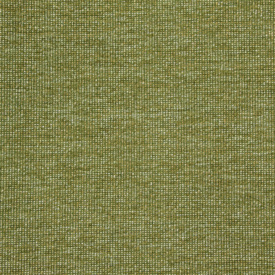 B8649 Avocado Fabric