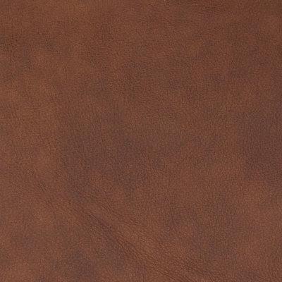 B8699 Nutmeg Fabric
