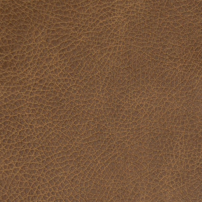 B8702 Molasses Fabric