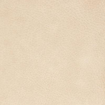B8729 Creme Brulee Fabric