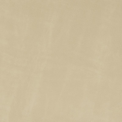 B8730 Sand Fabric