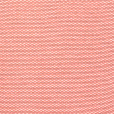 B8782 Coral Fabric