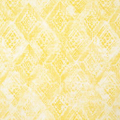 B8908 Sunburst Fabric