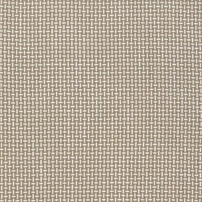 B9042 Mushroom Fabric