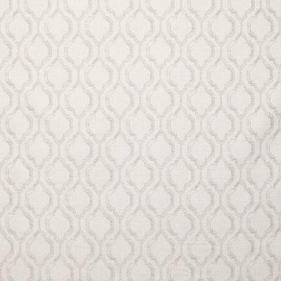 B9143 Birch Fabric