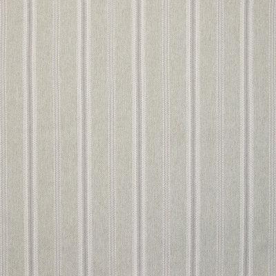 B9267 Sage Fabric