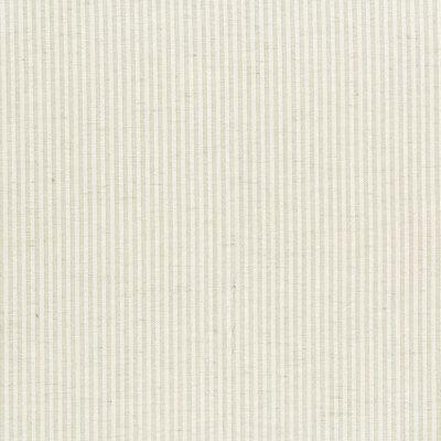 B9560 Champagne Fabric