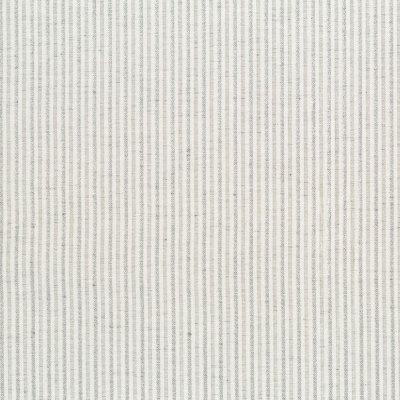 B9576 Silver Fabric