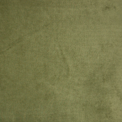 B9880 Celery Fabric