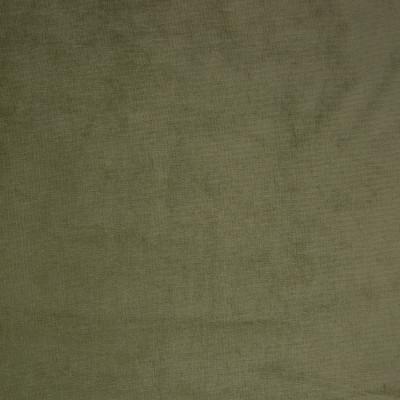 B9887 Light Green Fabric