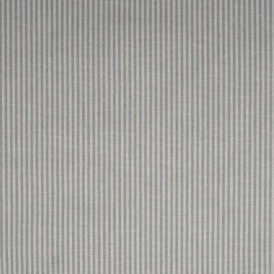F1036 Pewter Fabric