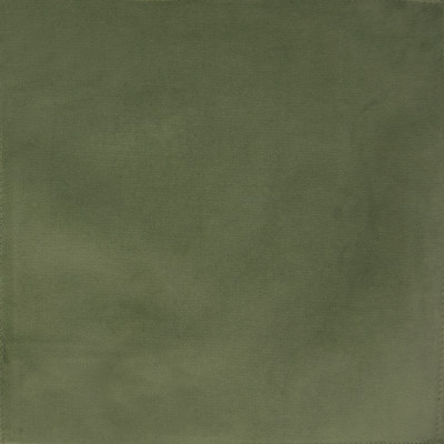F1165 Lima Bean Fabric