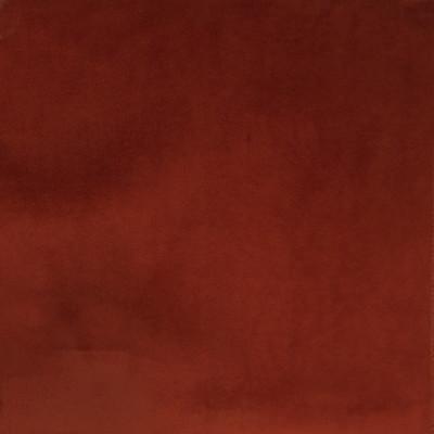 F1168 Rust Fabric