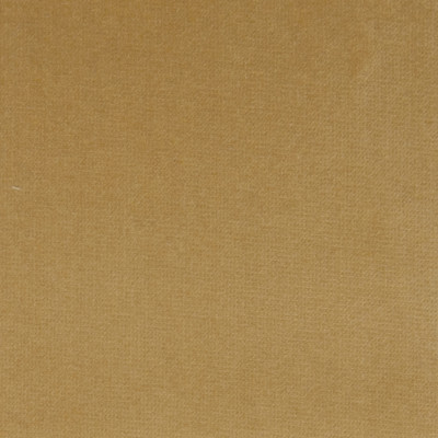 F1187 Gold Dust Fabric