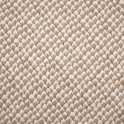 F1261 Sienna Fabric