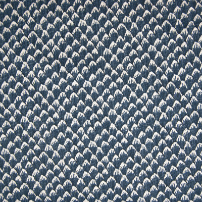 F1315 Cobalt Fabric