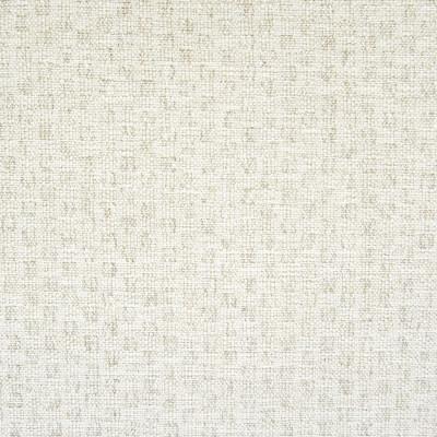 F1369 Salt Fabric