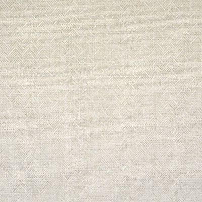 F1373 Jute Fabric