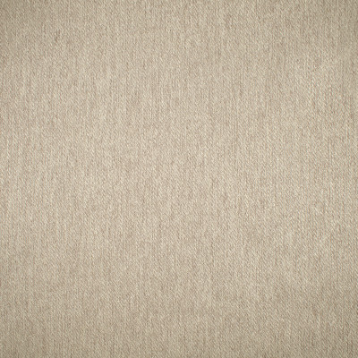 F1641 Birch Fabric