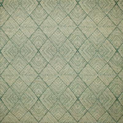 F1671 Peacock Fabric