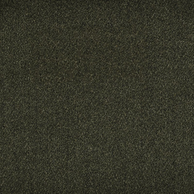 F1778 Moss Fabric