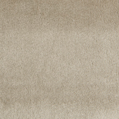 F1787 Wheat Fabric