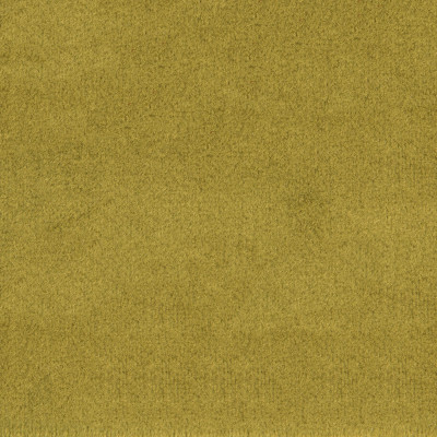 F1836 Grass Fabric