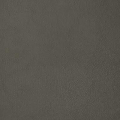 F1878 Ash Fabric