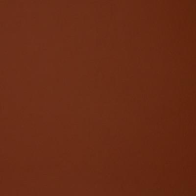 F1895 Rust Fabric