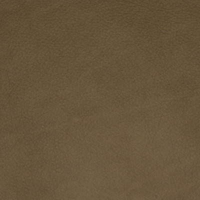 F2042 Taupe Fabric