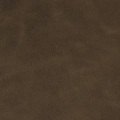 F2046 Cocoa Fabric