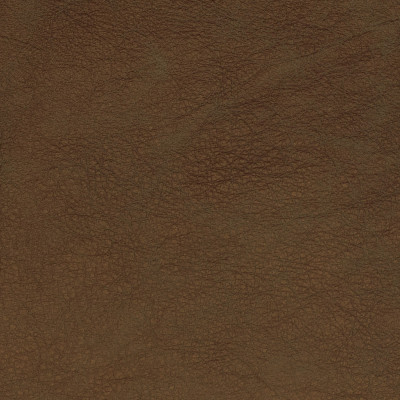 F2049 Gold Fabric