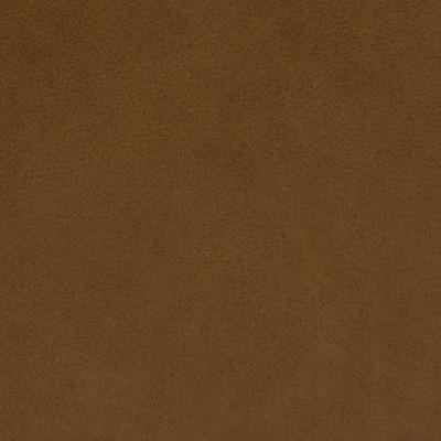 F2050 Gingerbread Fabric