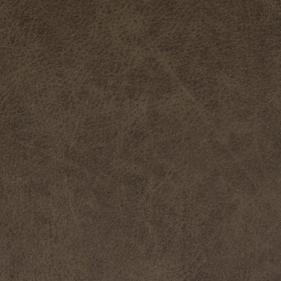 F2059 Ash Fabric