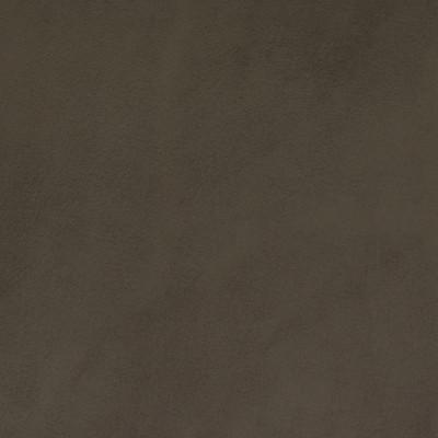 F2061 Grey Fabric